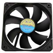 Dual Ball Case Fan