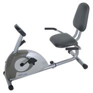 - Magnetic Recumbent Exercise Bike - Metallic Gray