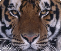 - Naturesmart Mouse Pad (Tiger) - Orange/Black/Whi