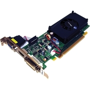 - GeForce 210 Graphic Card - 1 GB DDR3 SDRAM - PCI
