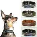 Hip Doggie Winston Collars for Dogs