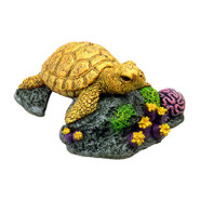 EXOTIC ENVIRONMENTS 
