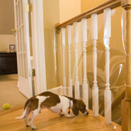 Cardinal Gates KidShield Banister Shield Protector