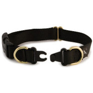 Premier KeepSafe Break-Away Collar