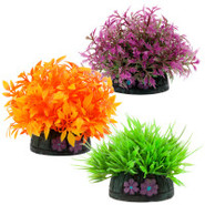 Top Fin&reg Small Aquarium Plants