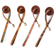 Pet Eco Friendly Dog Leashes