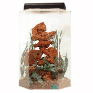 SeaClear 15 Gallon Hexagon Aquarium