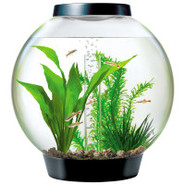 biOrb 16 Gallon Black Aquarium Kits with Lights