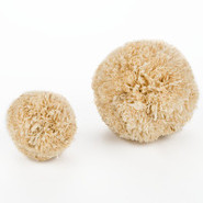Ware Corn Ball Chew Toy