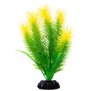 Top Fin Green & Yellow Hair Plant