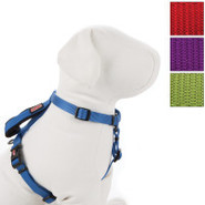 KONG Harness with Traffic Loop for Dogs