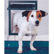 Door Mount Screened Pet Door