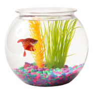 Top Fin 1 Gallon Plastic Fish Bowl