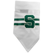 Michigan State Spartans Official Dog Collar Bandan