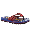 Kids Shoes, Boys and Little Boys Spider Man Sandal