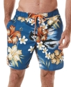 Swimwear, Hawiian Boat Scene Swim Shorts