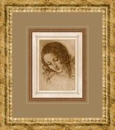 Classical Sketches B 17  High Wall Art (92839)