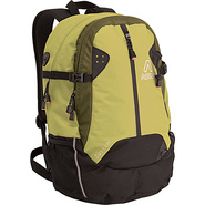 Switch Daypack - Spruce/Evergreen