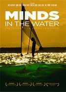 Minds In The Water Dvd