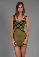 Jackel Lizard Dress