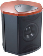 Martin Logan Cherry Subwoofer - Descent i