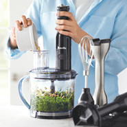 All-In-One Immersion Blender and Food Processor
