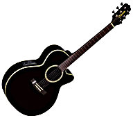 EG541SC Acoustic-Electric Guitar