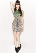 Two Tone Cut Out Dress in Python Taupe and Green -