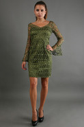 Allover Lace Dress in Green