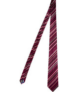 Bordeaux Multicolor Striped Silk Tie